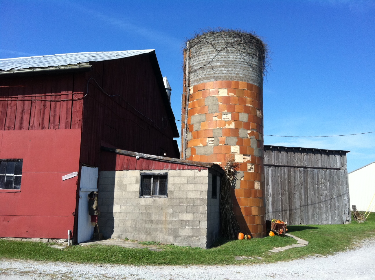 silo and milk barn at the pumpkin patch