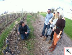Juan teaching us about the Vines