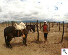 Some other visitors arrived on horseback