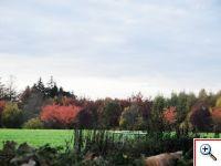 Chimay Countryside