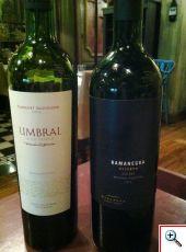 Wines at Azafran, Mendoza